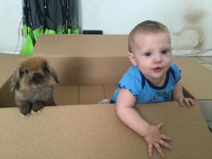 Rabbit and Child in Box